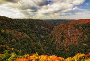 Фотографии Германия Леса Осенние Утес Bodetal Природа