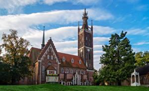 Фотография Германия Храмы Церковь Газон St. Petri Church Worlitz