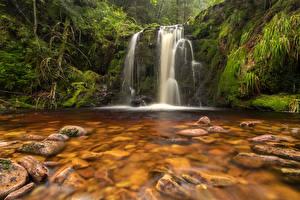 Фотография Германия Водопады Камень Утес Мох Ruhestein