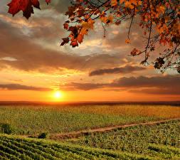 Обои Италия Тоскана Рассветы и закаты Поля Небо Осень Облака Солнце