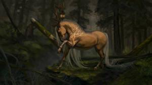 Фото Волшебные животные Лошади Рога
