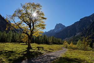 Картинки Горы Австрия Деревья Тропа Альпы Tyrol, Karwendel Природа