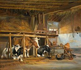 Фотографии Картина Корова Jan van Ravenswaay, Cows in a Stable Животные