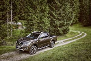 Фотография Renault Коричневые Металлик 2017 Alaskan Worldwide автомобиль