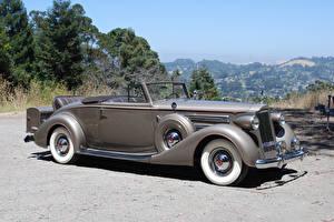 Фото Ретро Кабриолет Серый 1937 Packard Twelve Coupe Roadster Авто