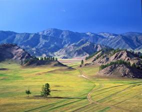 Фотография Россия Горы Луга Холмы Bochi Altai Republic