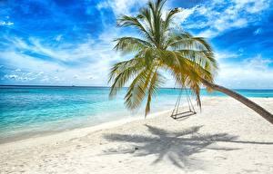 Картинка Море Тропики Пальмы Пляж Качели Природа