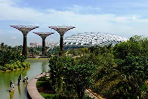Картинки Сингапур Сады Пруд Gardens by the Bay Природа