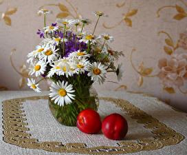 Фото Натюрморт Букеты Ромашки Персики Стена Цветы