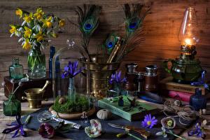 Фотография Натюрморт Ирисы Нарциссы Подснежники Керосиновая лампа Книга Цветы