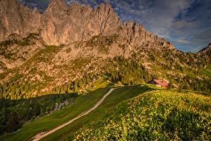 Фото Швейцария Горы Альпы Трава Тропинка Природа