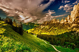 Картинка Швейцария Пейзаж Горы Леса Небо Альпы Трава Облака Kanton Freiburg