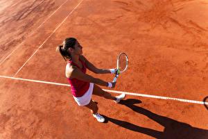 Фотография Теннис Шатенка Тренировка Девушки