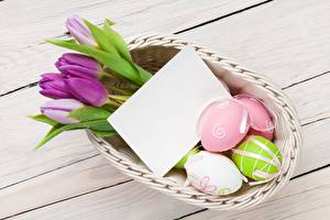 Картинки Тюльпаны Пасха Шаблон поздравительной открытки Яйца Цветы