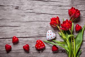 Картинка Тюльпаны День всех влюблённых Сердечко Цветы