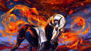 Фотография Единороги Волшебные животные Фантастика