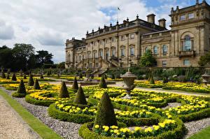 Картинка Великобритания Дома Ландшафтный дизайн Дворец Кусты Harewood House Leeds