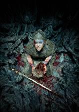 Фотография Воители Hellblade: Senua's Sacrifice Смотрит Мечи Кровь Игры
