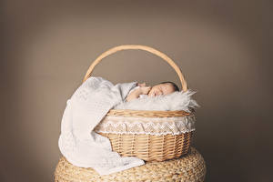 Обои Корзина Грудной ребёнок Спит