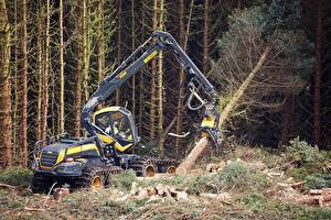 Картинка Деревья 2014-17 Ponsse ScorpionKing Harvester