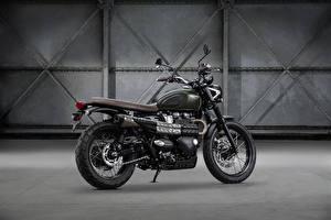 Фотографии Сбоку 2016-17 Triumph Street Scrambler Мотоциклы