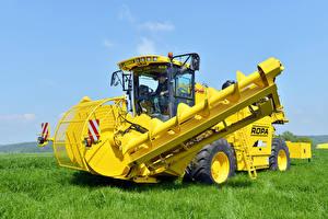 Фотографии Сельскохозяйственная техника Желтый Трава