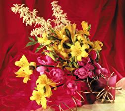 Фотография Букеты Лилии Пионы Цветы