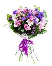 Фотографии Букеты Розы Орхидеи Белый фон