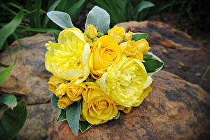 Картинки Букеты Розы Желтый