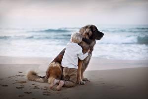 Картинка Собаки Мальчик Объятие животное Дети