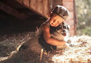 Фотография Собаки Объятие Сено Мальчики Ребёнок Животные