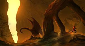 Картинка Драконы Воины