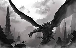 Картинки Драконы Крылья Черно белое Фантастика