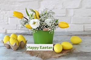 Фотографии Пасха Тюльпаны Праздники Яйца Английский Цветочный горшок