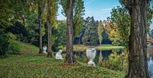 Обои Германия Парки Пруд Скульптуры Деревья Ствол дерева Worlitz Природа