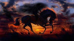 Обои Лошади Рассветы и закаты