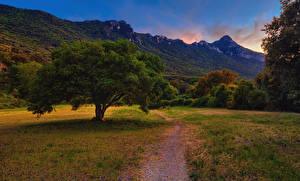 Фотография Италия Осень Холмы Деревья Трава San Felice Circeo