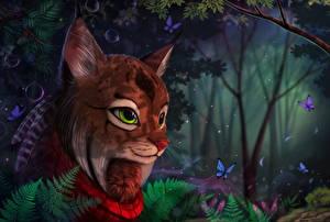 Картинка Волшебные животные Коты Бабочки