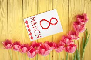 Обои 8 марта Тюльпаны Праздники Доски Английский Цветы