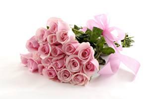 Картинки Розы Розовый