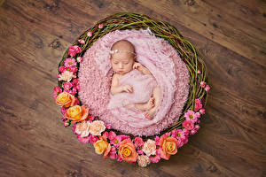 Фото Розы Корзина Грудной ребёнок