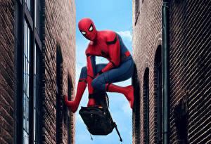 Фотографии Человек-паук: Возвращение домой Супергерои Человек паук герой Фильмы
