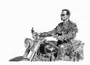 Фотографии Терминатор 2: Судный день Арнольд Шварценеггер Рисованные Черно белое Мотоциклист Белый фон Кино