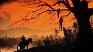 Обои Ведьмак 3: Дикая Охота Мертвец Деревья Ветвь Игры