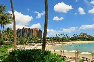 Картинка Тропики Курорты Дома США Гавайи Пляж Ствол дерева Honolulu Города