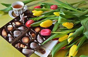 Фотографии Тюльпаны Конфеты Пища Цветы