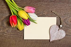 Фотография Тюльпаны День всех влюблённых Сердце Шаблон поздравительной открытки Цветы