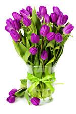 Фотография Тюльпаны Белом фоне Вазы Бантики Фиолетовый Цветы