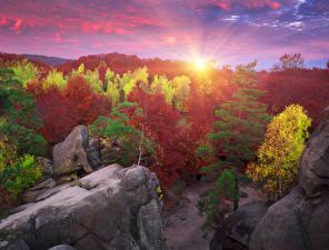 Фото Украина Рассветы и закаты Закарпатье Дерева Скалы Лучи света Природа