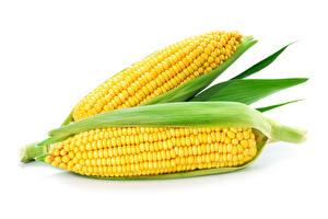 Картинка Овощи Кукуруза Белый фон Вдвоем Еда